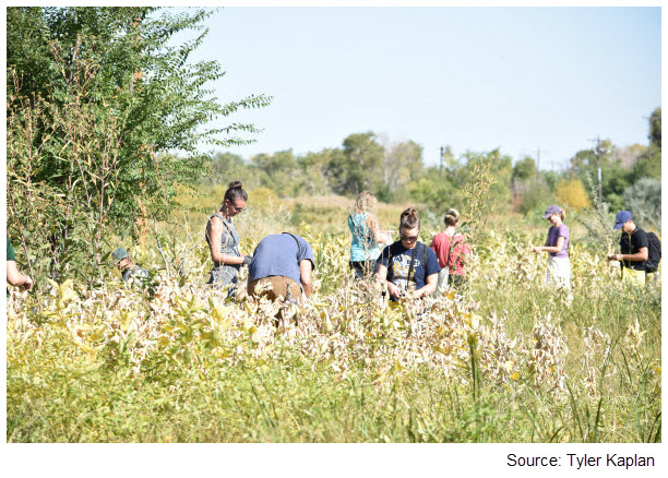 E Source staff participating in seed-picking project, September 2016